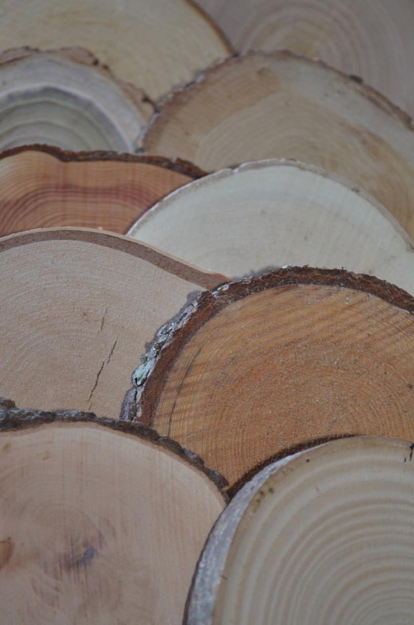 sachet de rondelles de bois 3 3 5 cm d coration maison rondelles de bois en ligne. Black Bedroom Furniture Sets. Home Design Ideas