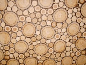 panneau d coratif en rondelle de bois classique paisseur 5mm sur mesure d coration maison. Black Bedroom Furniture Sets. Home Design Ideas