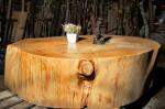 Table de séjour en grosse rondelle de cèdre